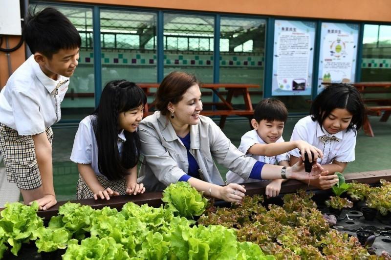 怕輸在起跑點?清大教授:營造英文環境 更要孩子有興趣