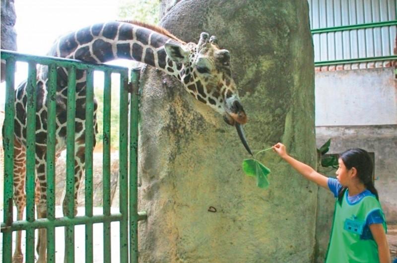 北市動物園6月19日起 休園10天