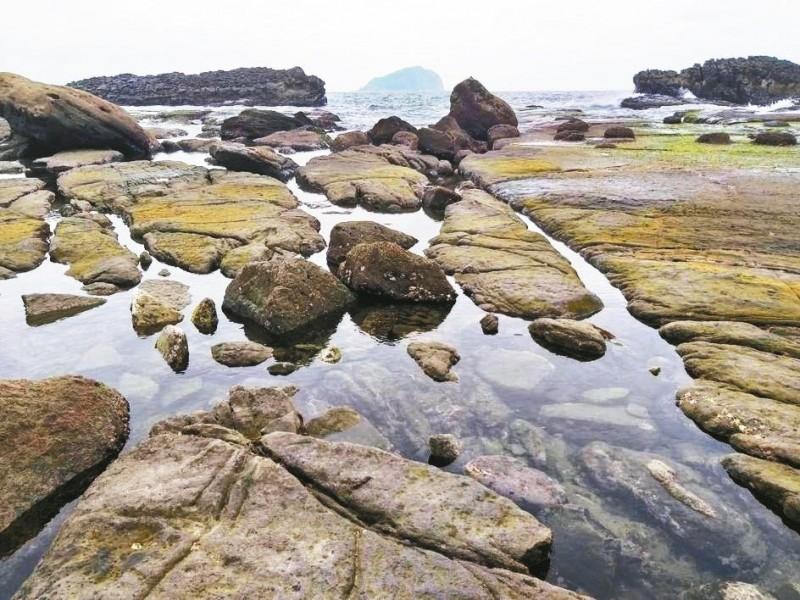 基隆八斗子大坪海岸 親水莫忘護生態