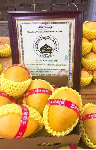 「夏雪芒果」紅到香港 台東水果明星再添一種