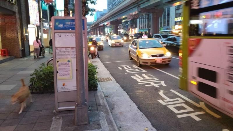 停靠區違停每年上萬件 公車記錄器只抓到千件