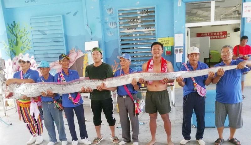 台東阿美族莿桐部落辦海祭 意外撿到5公尺長地震魚