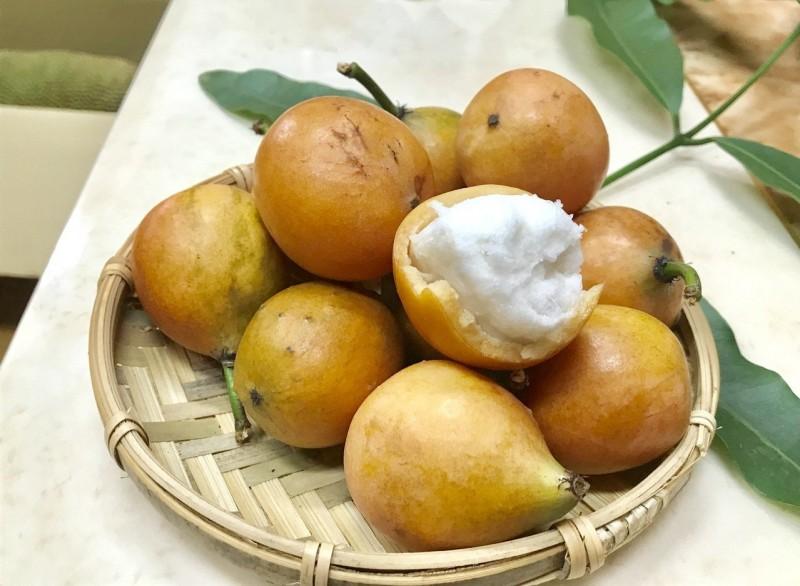 酸甜爽口 屏東果農種「黃金山竹」有成