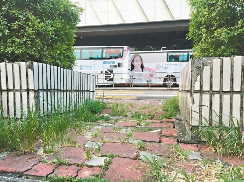 台北車站廣場人行道沒人管 雜草長 路坑洞