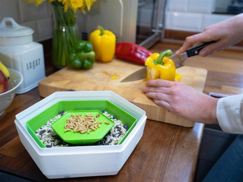 在家養昆蟲自給自足?英國新創推居家食用昆蟲養殖器
