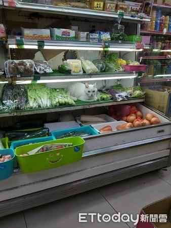 冰櫃見「長毛白蘿蔔」吹涼偷吃菜! 客人全萌暈:秤一斤賣我